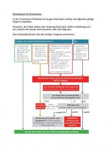thumbnail of Auszug_Rahmenhygieneplan_Schulbesuch